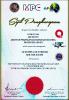 Sijil-sijil Anugerah Kumpulan INFYNYTY (KIK)
